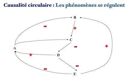 Causalité circulaire
